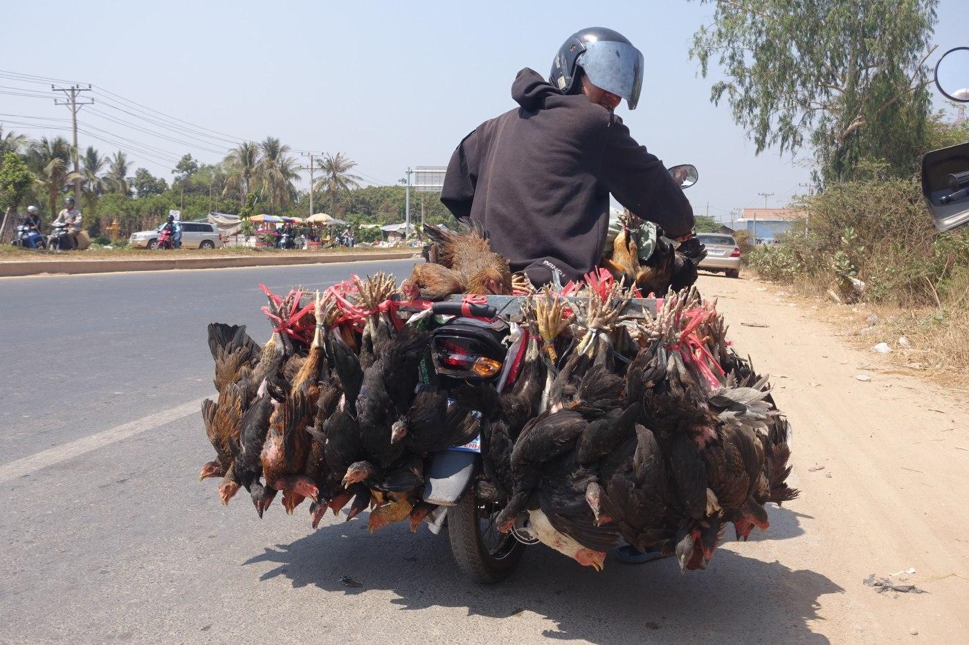 Retour sur Phnom Penh