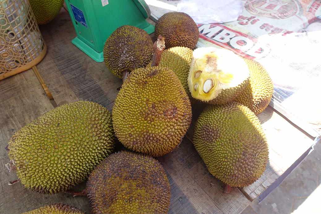 Visite chez les Durians.