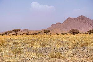 paysage-maroc